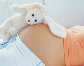 Когда наступает беременность после полового акта фото