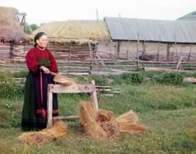Когда отмечается всемирный день сельских женщин фото