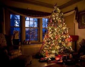 Когда ставить новогоднюю ёлку фото