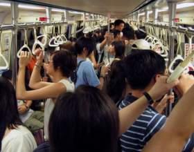 Кому положены льготы на проезд в транспорте фото