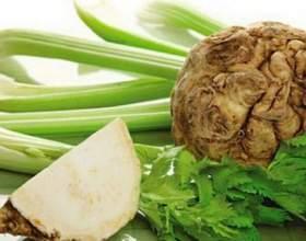 Корневой сельдерей: простые рецепты полезных блюд фото