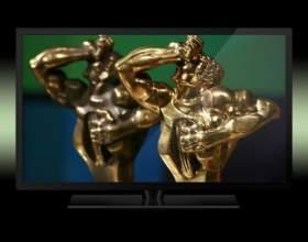 Кто стал обладателем премии тэфи-2011 фото