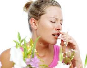 Куда обратиться с аллергией фото