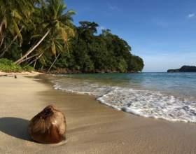 Куда поехать в декабре на море фото