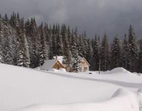 Куда сходить в новогодние каникулы фото