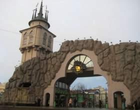Московский зоопарк: история и особенности фото