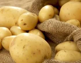 Очищенный картофель быстро темнеет. что делать? фото