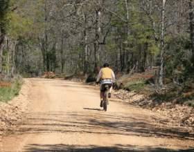 По какой стороне дороги должен ехать велосипедист фото