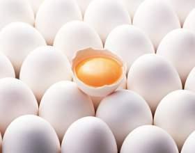 Почему яичные желтки приравнивают к курению фото