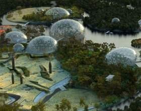 Почему ученые против строительства зоопарка в юнтолово фото