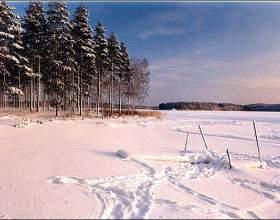 Почему выпадает цветной снег фото