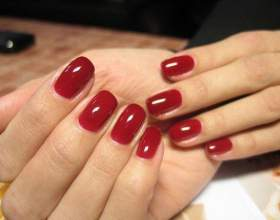 Покрытие для ногтей shellac: палитра цветов и технология нанесения... фото