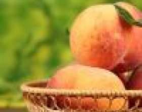 Польза абрикосов для кожи. часть 1 фото