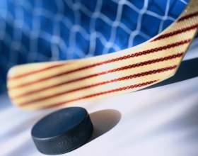 Правила игры в детский хоккей с шайбой фото