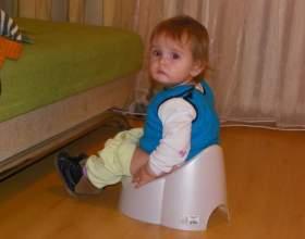 Приучение малыша к горшку. основные этапы фото