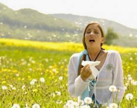 Признаки аллергии фото