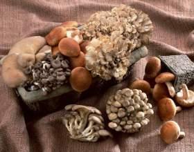 Рецепт маринада для грибов фото