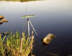 Рыбалка на карпа фото