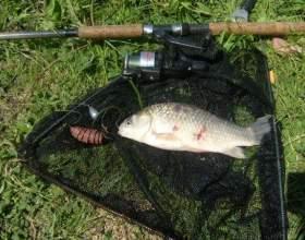 Секреты рыбака: донка на карася фото