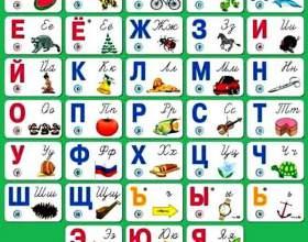 Сколько гласных и согласных звуков в русском языке фото