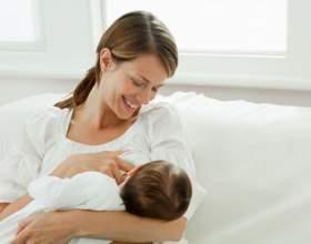 Сколько раз ест новорожденный ребенок фото