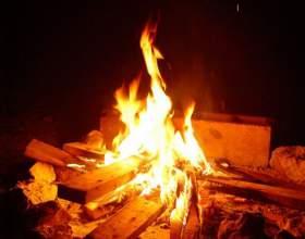 Как добыть огонь в лесу фото