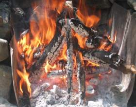 Как добыть огонь в лесу: уроки выживания фото