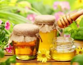 Как добывают мёд фото