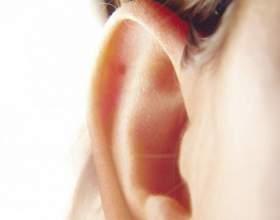 Как избавиться от прыщей в ушной раковине фото