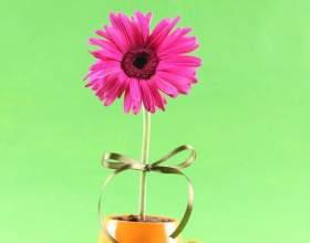 Как изобразить цветок фото