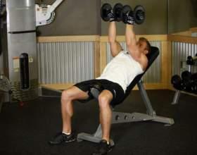 Как накачать мышцы груди гантелями фото