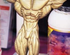 Как накачать мышцы голеней фото