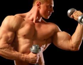 Как нарастить мышцы на руках фото