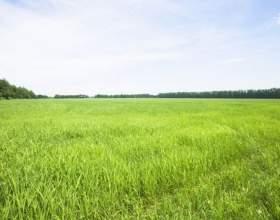 Как оценить стоимость земельного участка фото