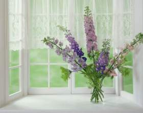 Как очистить окно от краски фото