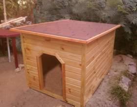 Как построить будку для немецкой овчарки фото