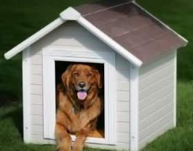 Как построить домик для собаки фото