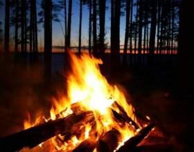 Как правильноразжечь костерв лесу фото