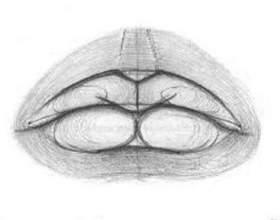 Как рисовать губы фото