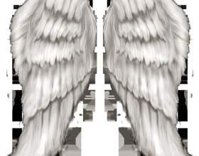 Как сделать крылья на фото фото