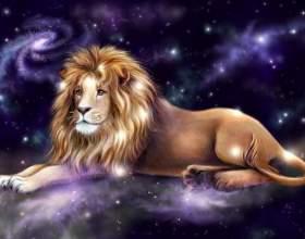 Как увлечь мужчину-льва фото