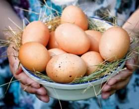 Как варить яйца фото