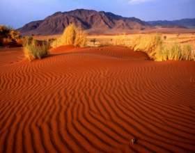 Как вести себя в пустыне фото