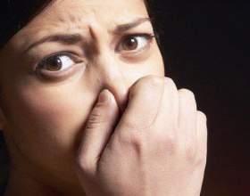 Как вывести запах в помещении фото