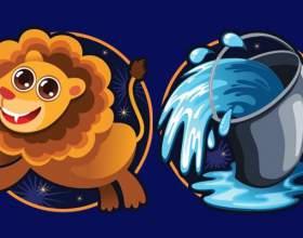 Совместимы ли женщина-лев и мужчина-водолей? фото
