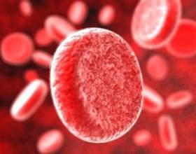 В чем отличия групп крови человека фото