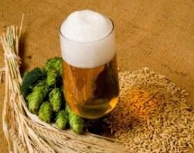 Варим домашнее пиво: рецепты пива фото